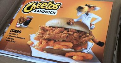 KFC Cheetos Sandwich